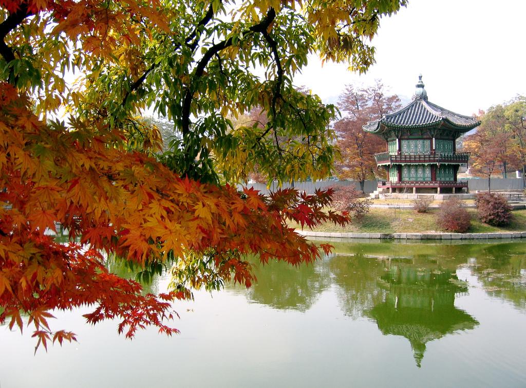 Гид по Южной Корее для начинающих