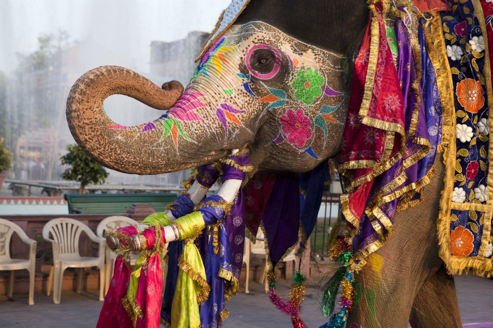 Островок объясняет: упрощение визы в Индию