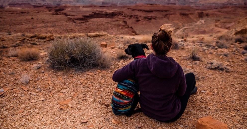 Путешествие с животными: часть вторая