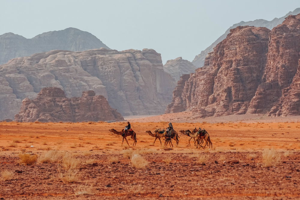 Отдых в Иордании в 2018 году: маршрут на 6 дней