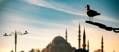Национальный характер: чему может научить Турция