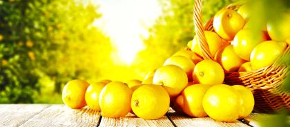 Во Франции пройдёт фестиваль лимонов