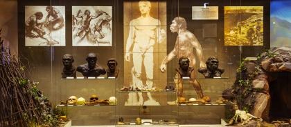 Московские музеи будут работать бесплатно неделю в месяц