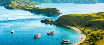 Индонезийский остров Комодо закроют для туристов