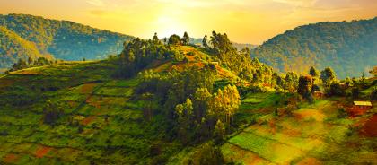 Национальный парк в Уганде назвали самым красивым местом в мире