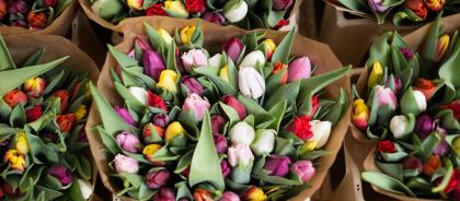 В России ужесточили правила ввоза цветов и фруктов