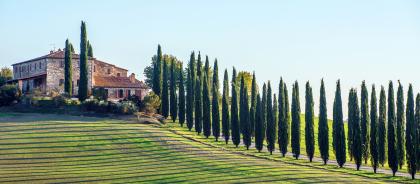 В Тоскане пройдёт ежегодный фестиваль Кьянти