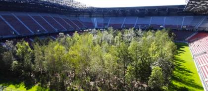 В Австрии на стадионе посадили лес