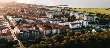 В Швеции открылся музыкальный магазин для мышей