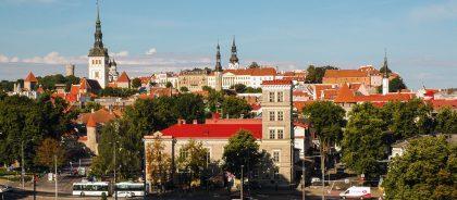 В Эстонии открылся необычный отель на болоте