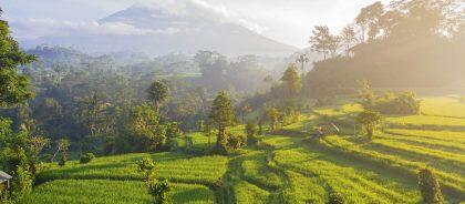 В Индонезии ужесточили правила въезда и внутренние ограничения