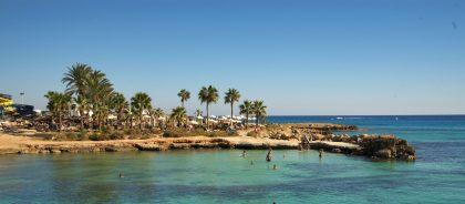 Регулярные ПЦР-тесты: сколько придётся заплатить непривитым путешественникам на Кипре