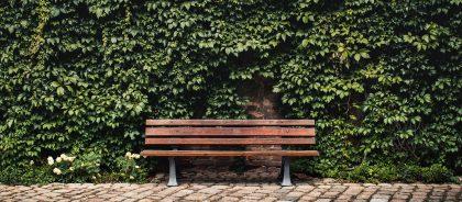 В Бельгии под опеку можно взять скамейку